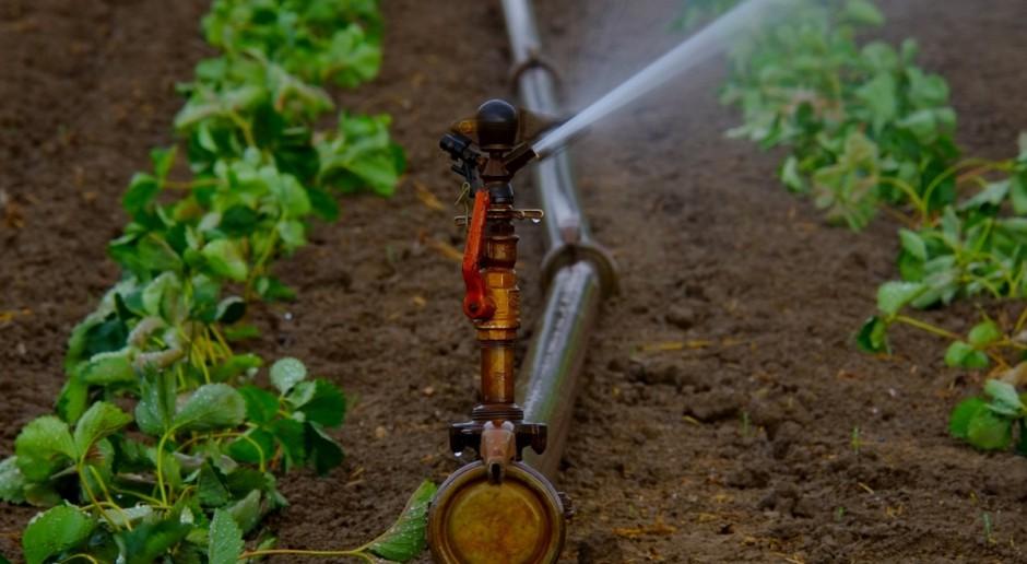 KE: Zrównoważony rozwój zależny od wody
