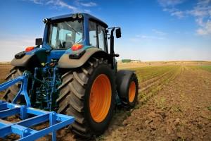 DBV: Niemcy nadal tracą powierzchnię gruntów rolniczych