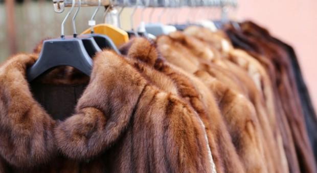 San Francisco zabrania sprzedaży futer