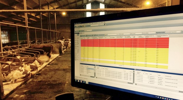 Przyszłość pozyskiwania i wykorzystania danych w produkcji mleka i wołowiny