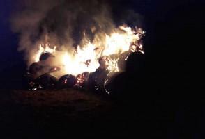 To jeden z pożarów, wznieconych przez piromana 14 marca br.