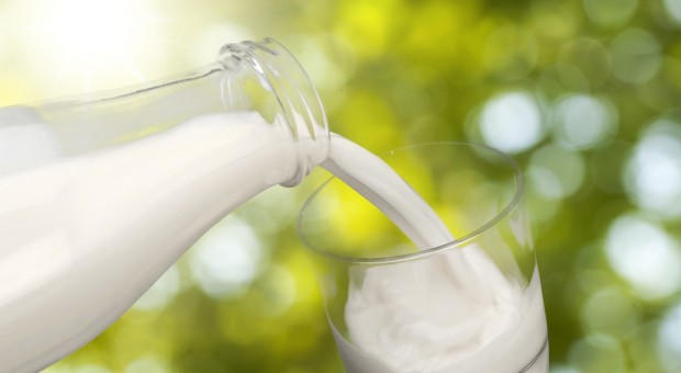 Anglia: Mleko w butelkach wraca do łask