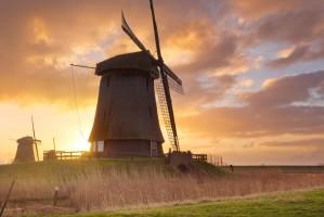 Holandia: Najdroższe grunty orne w UE