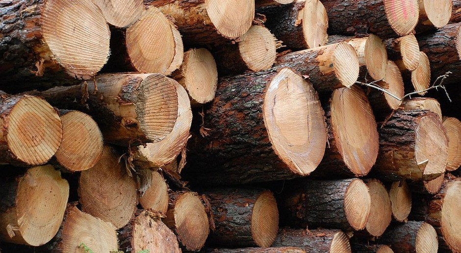 Mężczyzna odciął sobie dłoń przy cięciu drewna