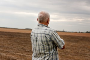 Rolnicy niekorzystnie ocenili koniunkturę w II półroczu 2017