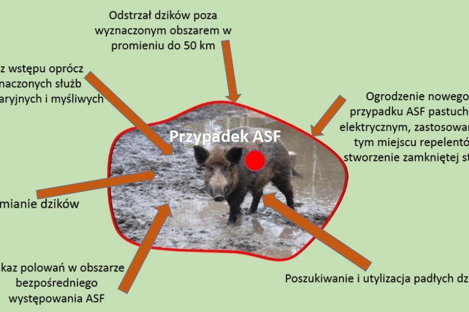 Wskazane działania na terenie z nowym przypadkiem ASF, na podst. wykładu prof. Zygmunta Pejsaka.