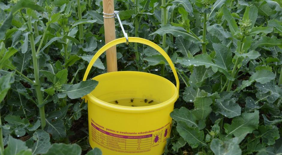 Prosty monitoring upraw