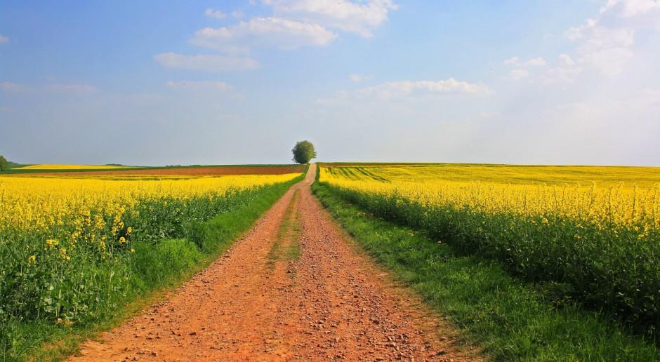 Ministerstwo Rolnictwa chce zreformować izby rolnicze