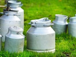 KE prognozuje w br. wzrost produkcji mleka w UE o 1,4 proc.