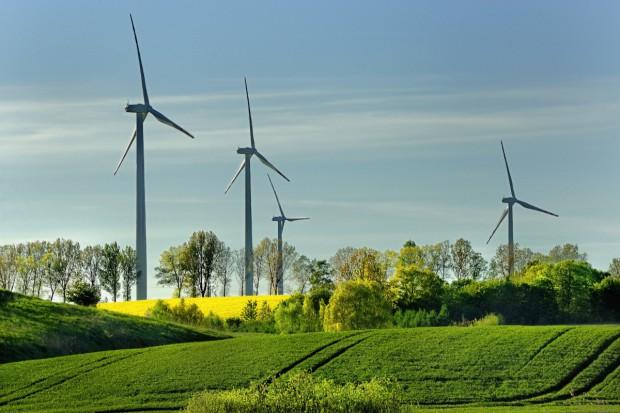 Na co zwrócić uwagę przed podpisaniem umowy o dzierżawę pod farmę wiatrową?