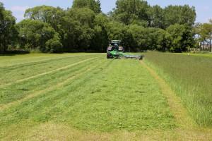 Jakie są zalety kośnego użytkowania łąk?