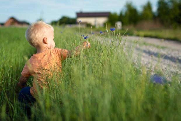 KRUS edukuje dzieci ws. zagrożeń, jakie stwarza praca na wsi