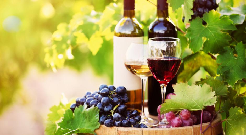 Francja: Branża winiarska domaga się wsparcia wartości 500 mln euro z powodu kryzysu