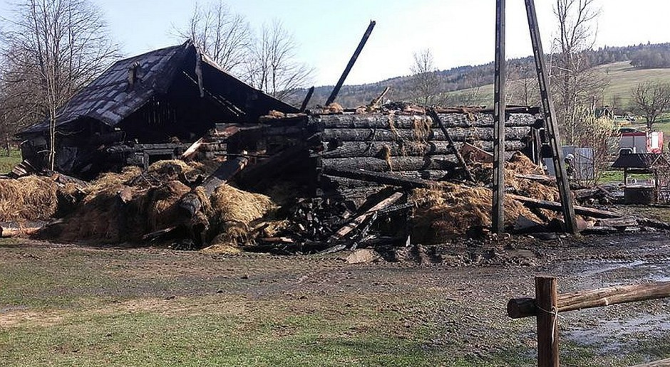 Pożar gospodarstwa w Małopolsce. Bydło uratowane, ranny gospodarz