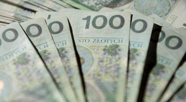 Nagrody resortu rolnictwa w ub.r. wyniosły 139,5 mln zł, a nie 173 mln zł