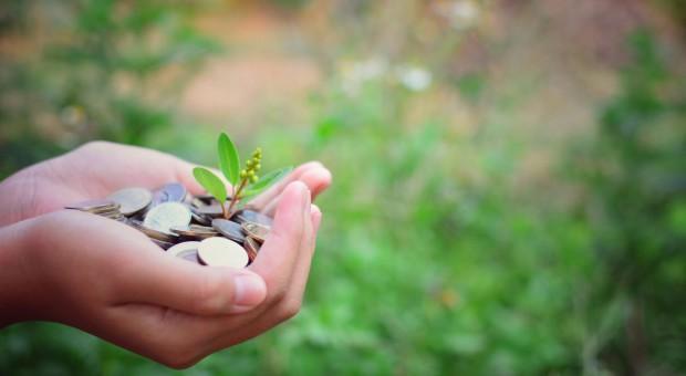 """Kiedy będzie rozporządzenie dotyczące """"Restrukturyzacji małych gospodarstw""""?"""