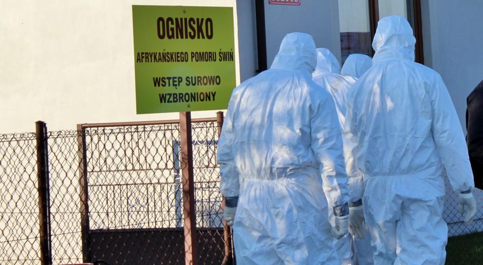 Nie tylko PIW-PIB w Puławach będzie badał próbki pod kątem ASF
