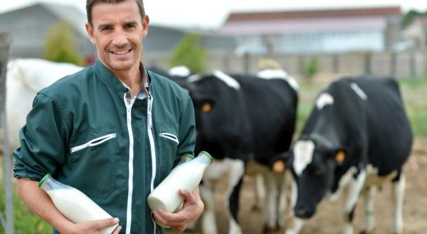 We Francji rośnie produkcja mleka ekologicznego