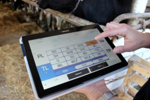 Rejestracja i wykorzystanie wyników korekcji racic