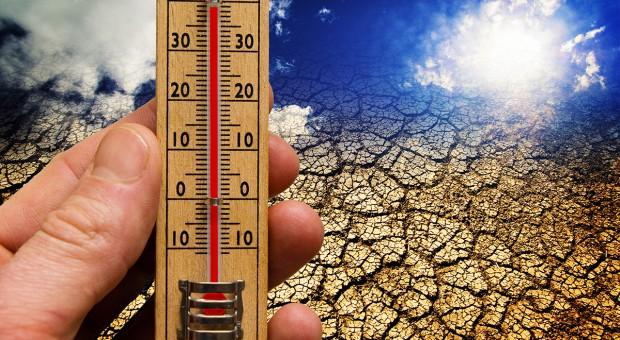 O prognozach zmian klimatu Ziemi