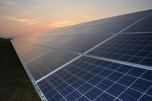 Atrakcyjne stawki dzierżawy gruntów pod elektrownie słoneczne