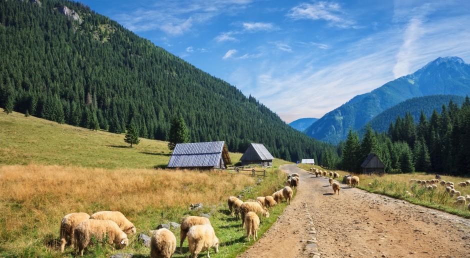 Jurgiel: Do końca kadencji będzie uchwalona ustawa górska