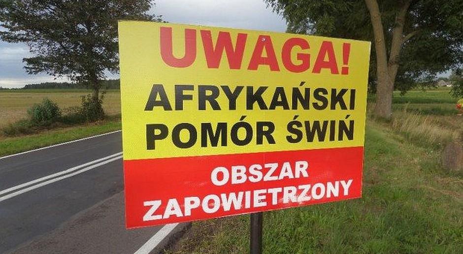 Gmina Jabłoń rozliczyła parlamentarzystów w sprawie ASF