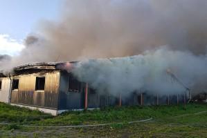 Chlewnia, która spłonęła, była nowoczesnym obiektem. Oddano ja do użytku zaledwie przed rokiem. Foto: OSP Objezierze