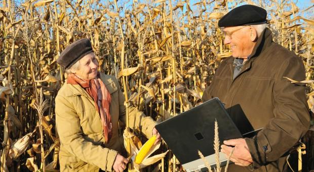 Concordia: Co trzeba wiedzieć o ubezpieczeniu upraw, żeby nie stracić