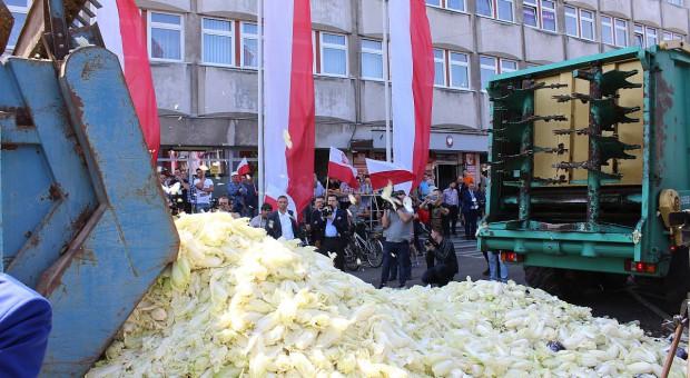 Rolnicze strajki z francuskim rozmachem. Kapusta przed urzędem z dedykacją dla ministra