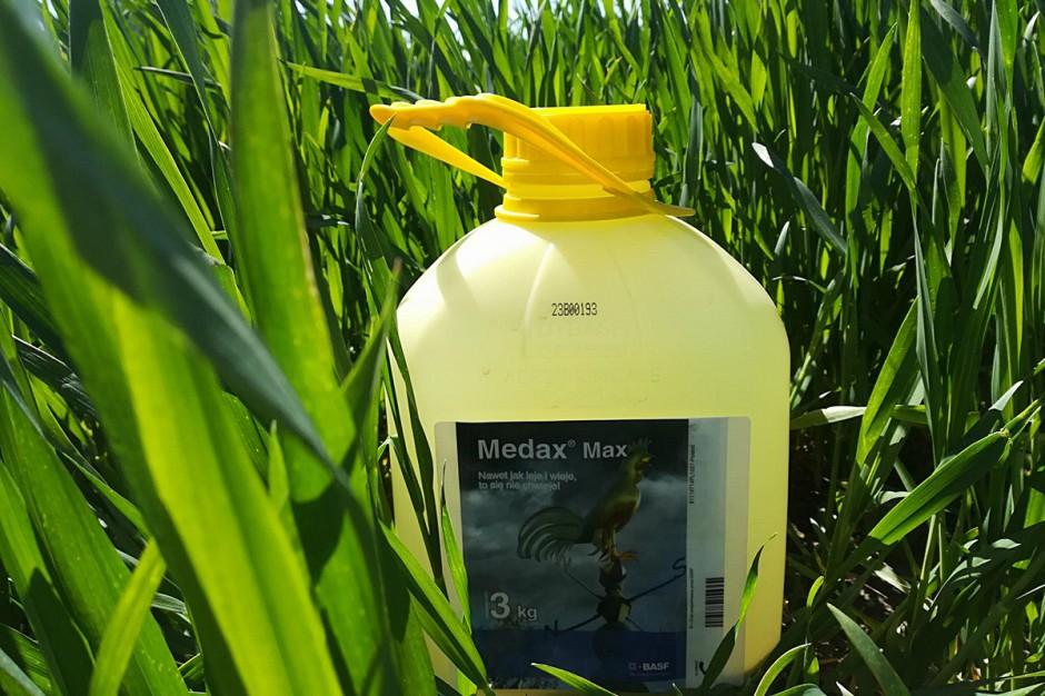 Do skracania użyłem preparatu Medax Max, który zawiera dwie substancje skracające: proheksadion wapnia oraz trineksapak etylu