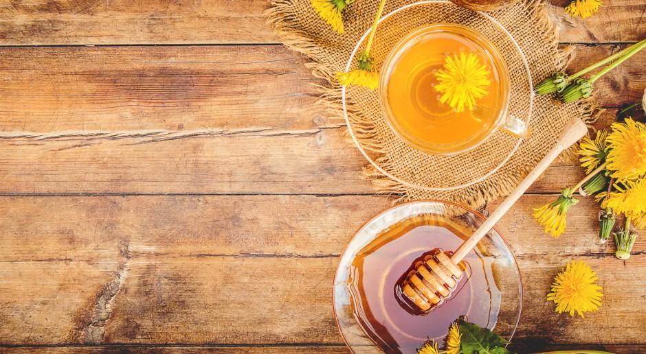 Zbiory miodów wiosennych mogą być lepsze niż przed rokiem