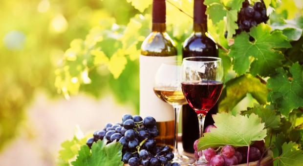 KE produkcja wina w UE ma być stabilna