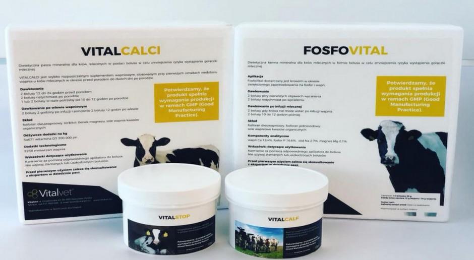 Nanotechnologia w suplementacji bydła