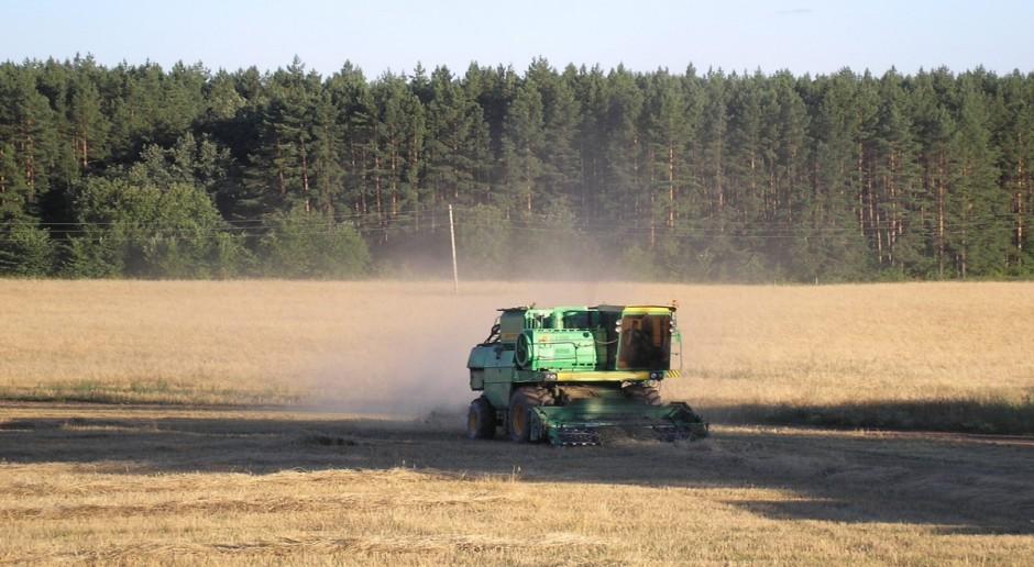 Rosja: Problemy sektora zbożowego