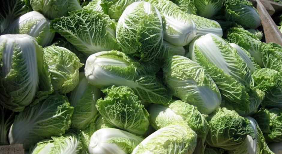 Żywność bez przekroczonych norm pozostałości pestycydów