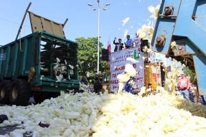 W Sieradzu protestujący rozrzucili kapustę pod Starostwem Powiatowym.