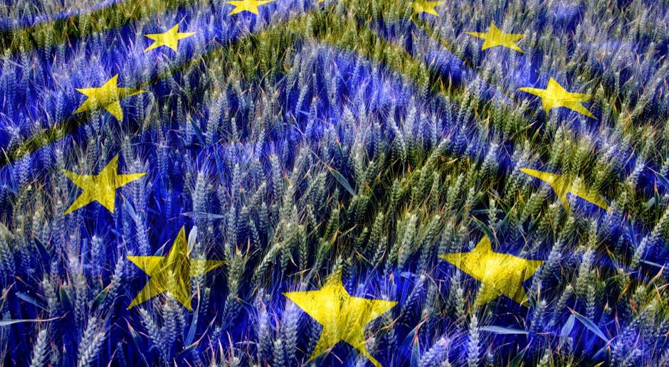 Polscy rolnicy przeciw zmniejszeniu wydatków na WPR w budżecie UE