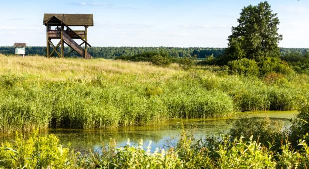 Lasy Państwowe wspierają parki narodowe w Podkarpackiem