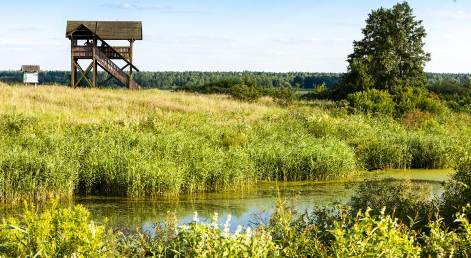 Biebrzański Park Narodowy chce wydzierżawić rolnikom prawie 1,2 tys. ha łąk
