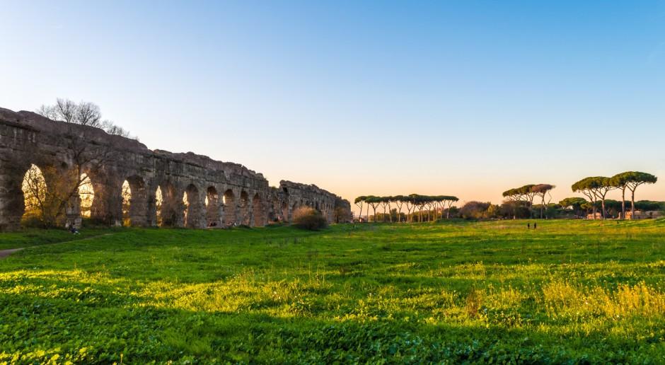 Owce i kozy zastąpią kosiarki w parkach w Rzymie