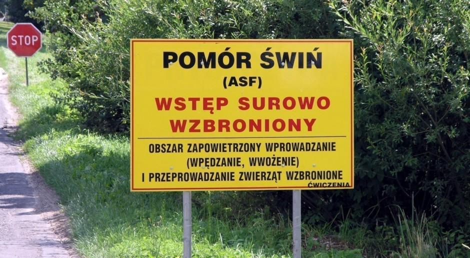 Sposób postępowania wobec ASF w Polsce w 2014 roku nie był ani błędny, ani narzucony?