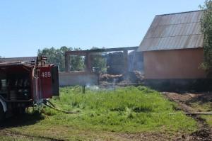 Z żywiołem walczyło 5 zastępów strażackich.