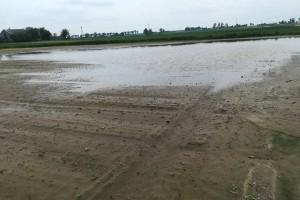 Stagnująca woda utrudnia wjazd na pole; Fot. A. Kobus