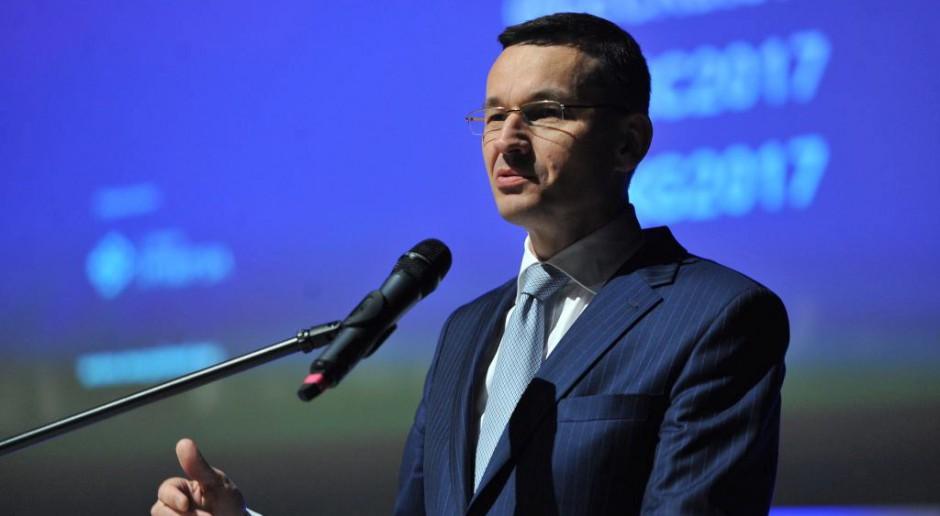Powstanie zespół, który przeanalizuje budowę płotu chroniącego Polskę przed ASF