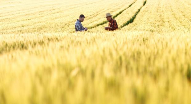 Izby rolnicze powinny być niezależne politycznie