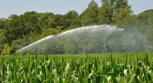 We wtorek rząd ma się zająć nowelą Prawa wodnego ograniczającą biurokrację