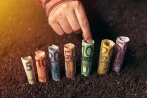 7 proc. dopłat bezpośrednich jeszcze niewypłaconych