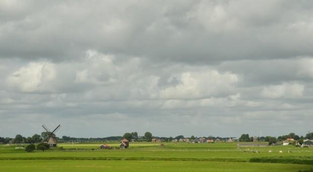 UE: Dni otwarte w gospodarstwach rolnych