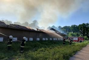 Z pożarem zmagało się 10 strażackich zastępów. Foto: PSP Olecko
